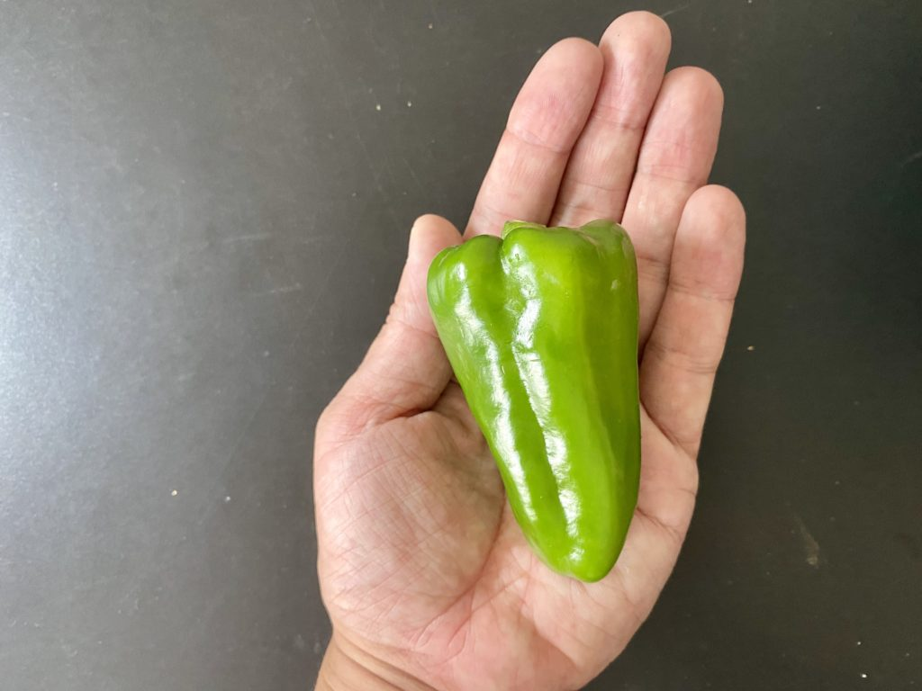 無農薬野菜のミレーピーマン