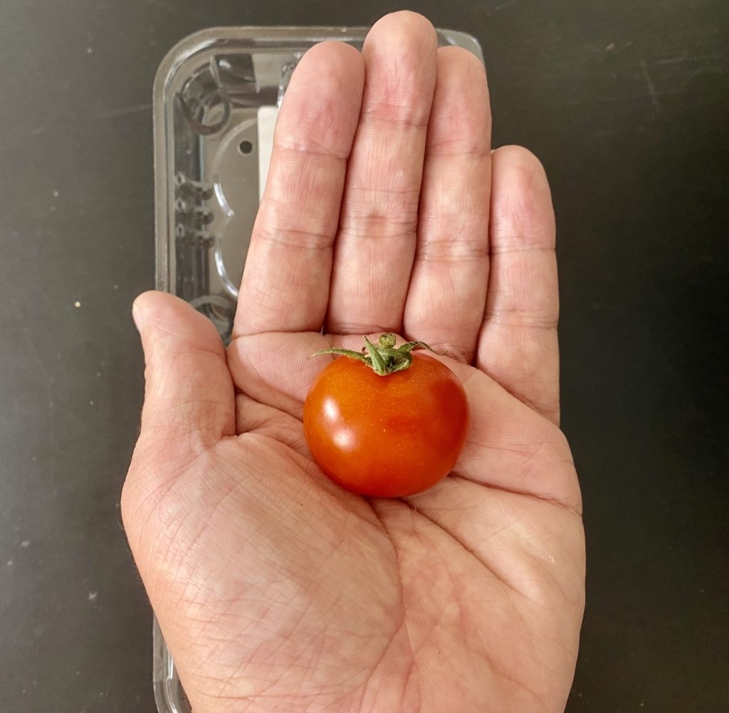 無農薬野菜のミレーミニトマト